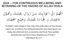 Dua.for.complete.protection.calamities