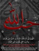 www-veiledgems-com-love-allah