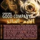 veiledgems-the-importance-of-choosing-good-company-2016-final